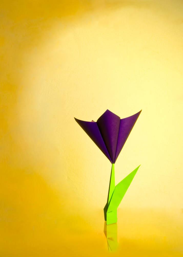 origami_001