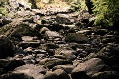 shelvingrockfalls2017_005